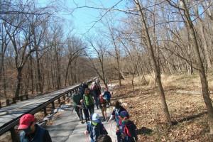 Winan's Meadow at Gwynn's Falls Hike - March 2021